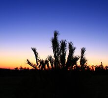 Highbridge Wisonsin Sunset by Adam Kuehl