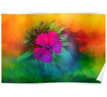 Rainbow flower,  Dedicated to Happiness Poster