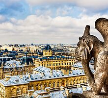 Paris - Oh Hum! - Parisian Gargoyle by Mark Tisdale