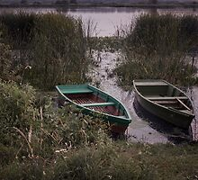 Boats On The Lake by Delvin