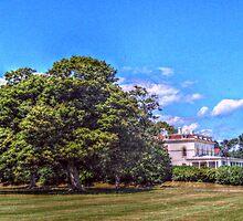 The Astor Beechwood Mansion by Jane Neill-Hancock