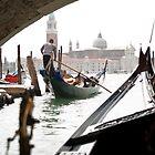 Venice Gondolier by Tiffany Muff