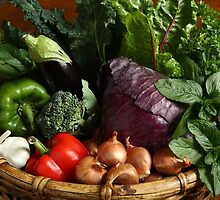 Basket of Organic Veggies by Kathy Reid
