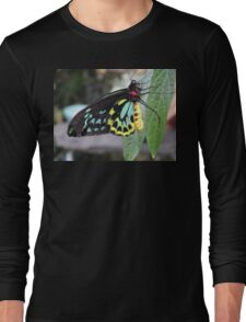 Colorful Butterfly on Leaf  Long Sleeve T-Shirt