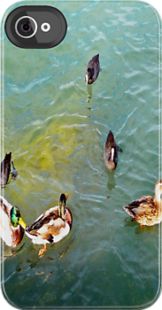Meeting of ducks by Art-Motiva