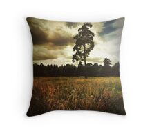 Magic Countryside Throw Pillow