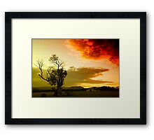 The sky, the tree and me Framed Print