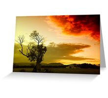 The sky, the tree and me Greeting Card