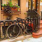 LOCKED IN NEW YORK CITY by Barbny