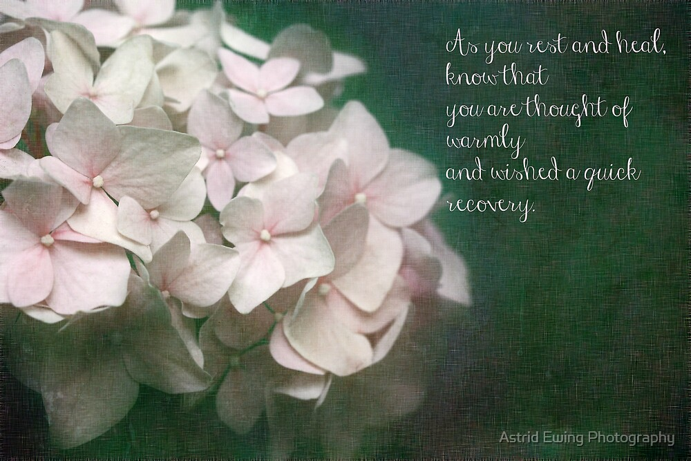 Get Well Soon by Astrid Ewing Photography