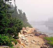 Acadia National Park, Schoodic Peninsula, Maine, USA by fauselr