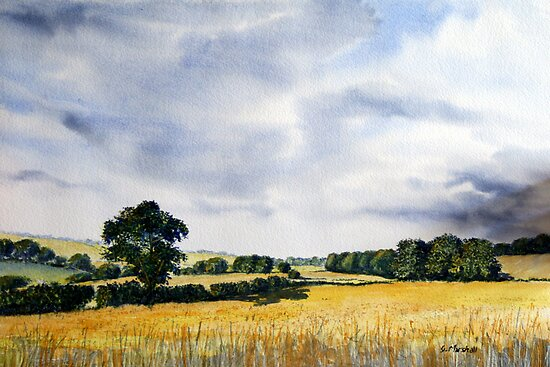 Fields of Gold, Yorkshire Wolds by Glenn Marshall