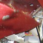 Little Red Crash Bird by Ruth Magnus