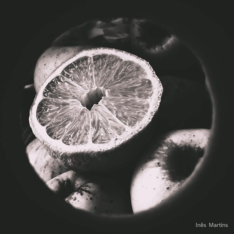 Untitled by Inês  Martins