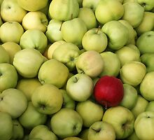 Odd Apple Out by Tiffany Muff