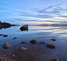 Sunrise Padilla Bay by Mike  Kinney