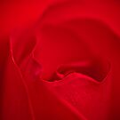 Red Rose Abstract by onyonet photo studios