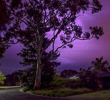 Purple tree Lightning flash 01 by Justinlrg78