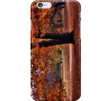 Wonderful fall iPhone Case/Skin