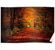 Colors of Fall-Custer MI Poster