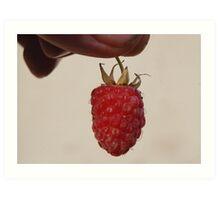 Rasp Berry. Art Print