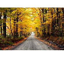 Country Road-II Photographic Print