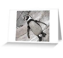 typical penguin Greeting Card