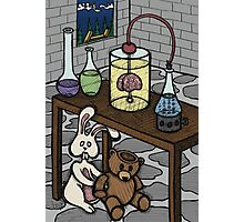 Teddy Bear and Bunny - The Rescue Came Too Late Photographic Print