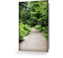 Life; A Road That Never Ends... Greeting Card