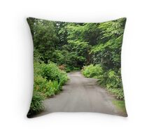 Life; A Road That Never Ends... Throw Pillow
