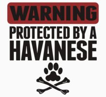 Warning Protected By A Havanese Kids Tee