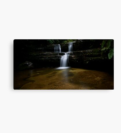 Tranquil Contemplation  Canvas Print