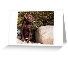 If that moves again I'm on it! Greeting Card