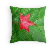 Fallen Star Throw Pillow