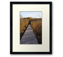 Coloured Boardwalk Framed Print