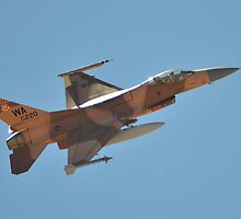 F-16 Fighting Falcon by Eleu Tabares