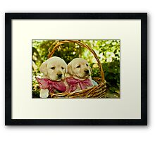 What did they offer you? Framed Print