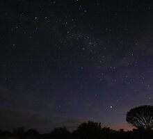 Land of the Southern Cross by Tim Coleman