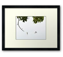 A Good Day Fishing Framed Print