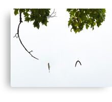 A Good Day Fishing Canvas Print