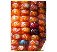 Ornamental Indian Maize Closeup Poster