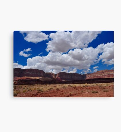 Driving By Canvas Print
