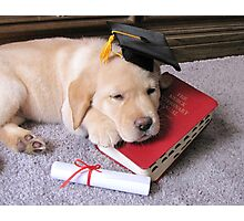 Graduation!  What an ordeal! Photographic Print