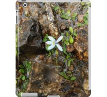 Tiny Flower, Talbingo, NSW, Australia. iPad Case/Skin