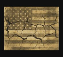 American Flag on Cracked Wall Vintage by Nhan Ngo
