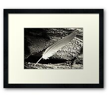 Ruffling Ones Feathers Framed Print