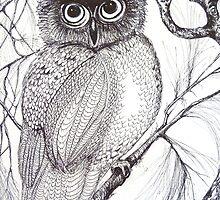 Owl by Cathy Gilday