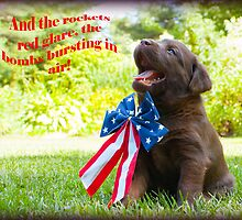 And the rockets red glare! by DennisThornton