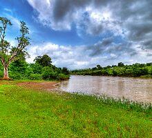 Riverside #2 by Prasad