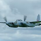 Mosquito at Ardmore by Barry Culling